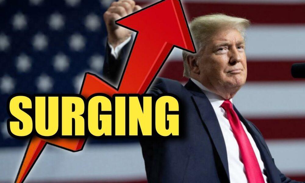 Trump Still Surging! | POLLS
